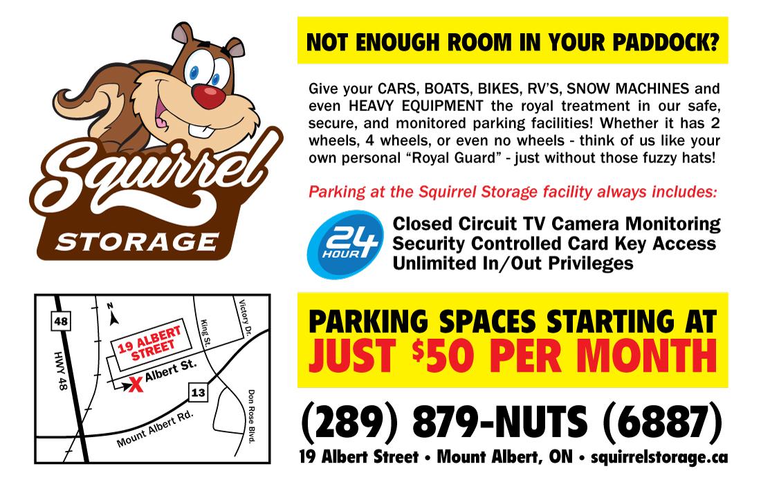 SquirrelStorage_ParkingFlyer_July7B